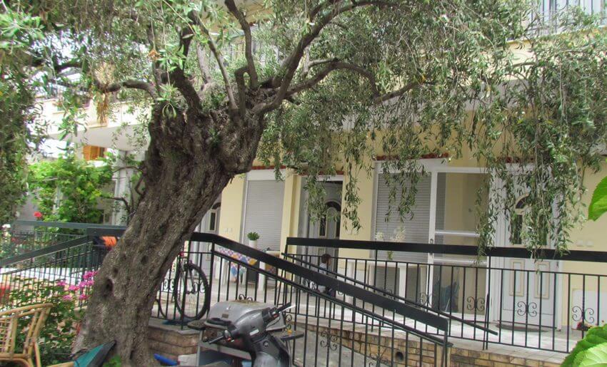 Nafsika 2 Studios potos tasos grcka leto