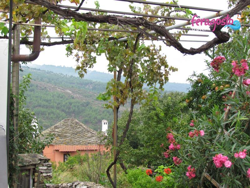 etno selo teologos tasos vinograd