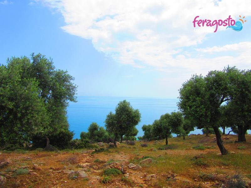 giola tasos grcka leto