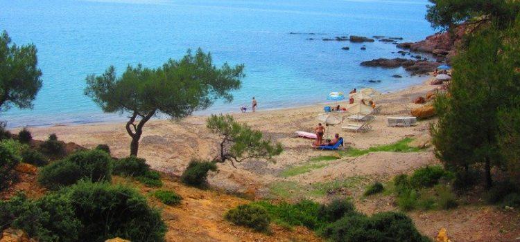 notos plaza plaze na tasosu