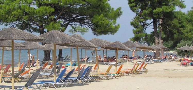 pachis plaza plaze na tasosu