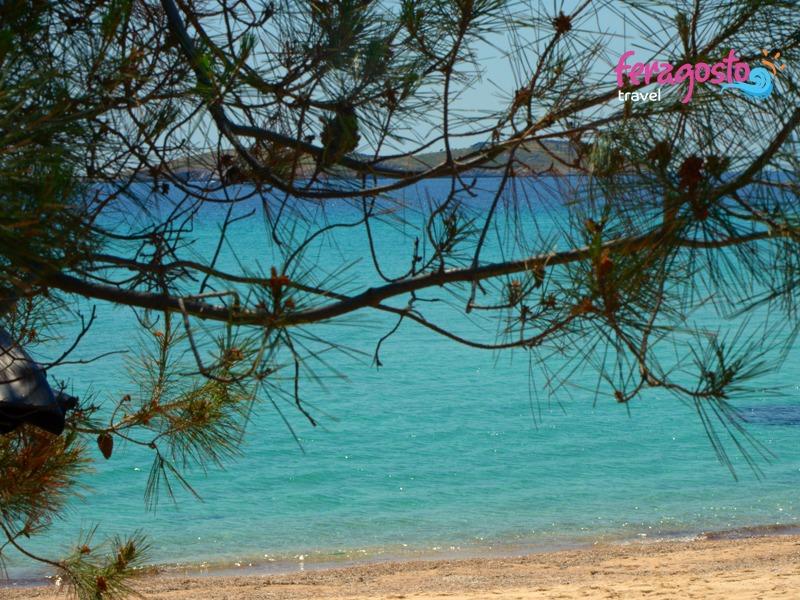 plaze tasos psili amos plaza grcka leto