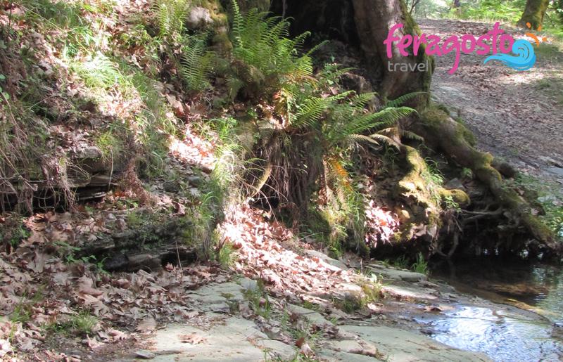 vodopadi kastro tasos grcka