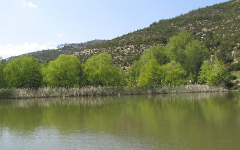 maries jezero tasos